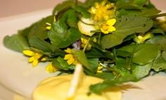 Salátaboglárka citromos vinyegrettel